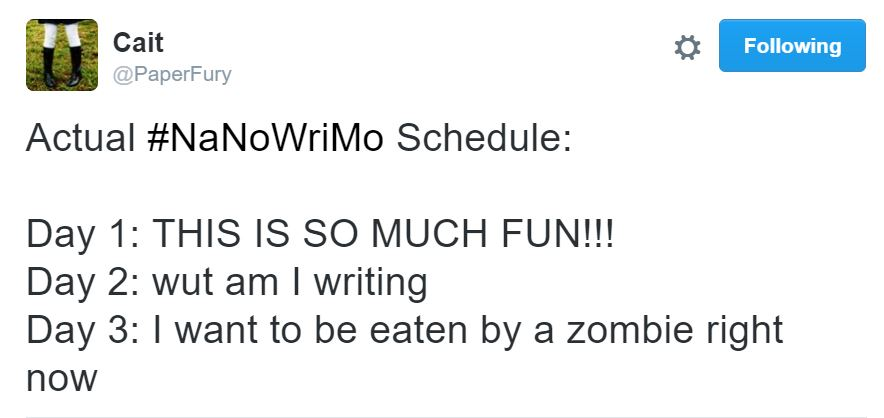 nanowrimo-week-1